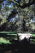 view [Mountain Meadow]: the croquet court and an antique English wellhead (east). digital asset: [Mountain Meadow]: the croquet court and an antique English wellhead (east).: 1999 Apr.