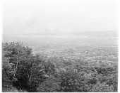 view [Mount Royal Park]: looking down from Mount Royal toward the city of Montreal. digital asset: [Mount Royal Park] [glass negative]: looking down from Mount Royal toward the city of Montreal.