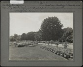 view [Elizabeth Park]: flower beds in the park, with a wooded area across the road. digital asset: [Elizabeth Park] [photographic print]: flower beds in the park, with a wooded area across the road.