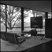 view [Glass House]: interior view featuring 'Burial of Phocion' by Nicolas Poussin and Mies van der Rohe furniture. digital asset: [Glass House] [safety film negative]: interior view featuring 'Burial of Phocion' by Nicolas Poussin and Mies van der Rohe furniture.