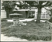 view [Ford Garden]: main entrance to house, with Japanese-style garden in foreground. digital asset: [Ford Garden] [photographic print]: main entrance to house, with Japanese-style garden in foreground.
