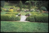 view [Henry's Hill]: the formal boxwood garden and deep flowering border inside a stone wall. digital asset: [Henry's Hill]: the formal boxwood garden and deep flowering border inside a stone wall.: 2008 Sept.