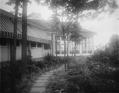 view [Selborne Farms]: walk through trees and ferns to screened porch. digital asset: [Selborne Farms] [glass negative]: walk through trees and ferns to screened porch.