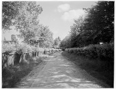 view [Miscellaneous Sites in England, Series 1]: a road bordered by unusual fencing in an unidentified rural location. digital asset: [Miscellaneous Sites in England, Series 1] [ glass negative]: a road bordered by unusual fencing in an unidentified rural location.