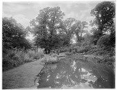view [Sutton Place]: a water garden and surrounding plantings. digital asset: [Sutton Place] [glass negative]: a water garden and surrounding plantings.