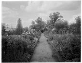 view [Sutton Place]: pathway and beds in the walled garden. digital asset: [Sutton Place] [glass negative]: pathway and beds in the walled garden.