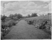 view [Sutton Place]: the long garden border and grass path. digital asset: [Sutton Place] [glass negative] the long garden border and grass path.