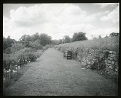 view [Sutton Place]: the long garden border and grass path. digital asset: [Sutton Place] [lantern slide] the long garden border and grass path.