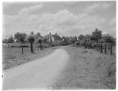 view [Miscellaneous Sites in Shere, Surrey, England, and Vicinity, Series 1]: a road leading to an unidentified farm. digital asset: [Miscellaneous Sites in Shere, Surrey, England, and Vicinity, Series 1] [glass negative]: a road leading to an unidentified farm.