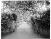view [Miscellaneous Sites in Shere, Surrey, England, and Vicinity, Series 1]: entrance gate and driveway to a house or estate in an unidentified location. digital asset: [Miscellaneous Sites in Shere, Surrey, England, and Vicinity, Series 1] [glass negative]: entrance gate and driveway to a house or estate in an unidentified location.