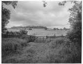 view [Miscellaneous Sites in Shere, Surrey, England, and Vicinity, Series 2]: a rustic woven fence and gate, with sheep in a pasture beyond, in an unidentified location. digital asset: [Miscellaneous Sites in Shere, Surrey, England, and Vicinity, Series 2] [glass negative]: a rustic woven fence and gate, with sheep in a pasture beyond, in an unidentified location.