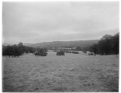 view [Chatsworth Estate]: the park at Chatsworth, with Chatsworth House in the far distance. digital asset: [Chatsworth Estate] [glass negative]: the park at Chatsworth, with Chatsworth House in the far distance.