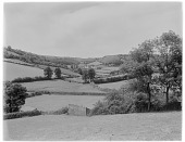 view [Miscellaneous Sites in Branscombe, Devon, England]: looking toward the village of Branscombe from one of the surrounding hills, showing some of the classic English hedgerows. digital asset: [Miscellaneous Sites in Branscombe, Devon, England] [glass negative]: looking toward the village of Branscombe from one of the surrounding hills, showing some of the classic English hedgerows.