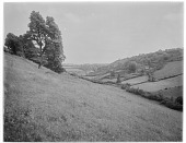 view [Miscellaneous Sites in Branscombe, Devon, England]: an unidentified landscape view. digital asset: [Miscellaneous Sites in Branscombe, Devon, England] [glass negative]: an unidentified landscape view.