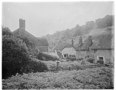 view [Miscellaneous Sites in Branscombe, Devon, England]: unidentified cottages and back gardens in Branscombe. digital asset: [Miscellaneous Sites in Branscombe, Devon, England] [glass negative]: unidentified cottages and back gardens in Branscombe.