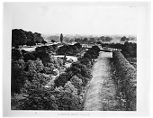 view [Hampton Court Palace]: looking toward the river across the park. digital asset: [Hampton Court Palace] [glass negative]: looking toward the river across the park.