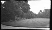 view [Unidentified Sites in England]: an unidentified location, possibly in a park. digital asset: [Unidentified Sites in England] [negative]: an unidentified location, possibly in a park.