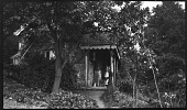 view [Unidentified Sites in England]: an unidentified cottage with a woman and dog on the porch. digital asset: [Unidentified Sites in England] [negative]: an unidentified cottage with a woman and dog on the porch.