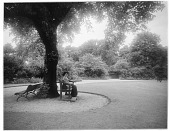 view [Miscellaneous Sites in London, England]: an unidentified woman sitting on a bench under a tree, probably in Park Square Gardens. digital asset: [Miscellaneous Sites in London, England] [glass negative]: an unidentified woman sitting on a bench under a tree, probably in Park Square Gardens.
