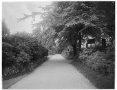 view [Miscellaneous Sites in London, England]: probably Crescent Gardens or Park Square Gardens. digital asset: [Miscellaneous Sites in London, England] [glass negative]: probably Crescent Gardens or Park Square Gardens.