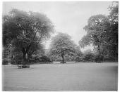 view [Miscellaneous Sites in London, England]: Park Square Gardens near Marylebone Road, looking east, with the old Holy Trinity Church barely visible in the right background. digital asset: [Miscellaneous Sites in London, England] [glass negative]: Park Square Gardens near Marylebone Road, looking east, with the old Holy Trinity Church barely visible in the right background.