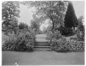 view [Unidentified Garden in Surrey, England]: stairs leading up to a grass walkway. digital asset: [Unidentified Garden in Surrey, England] [glass negative]: stairs leading up to a grass walkway.