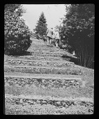 view [Wittington]: grass and stone stairs leading up from the rock garden by the Thames. digital asset: [Wittington] [lantern slide]: grass and stone stairs leading up from the rock garden by the Thames.