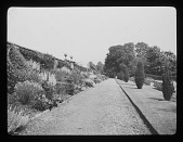view [Notgrove Manor]: garden border and wall. digital asset: [Notgrove Manor] [lantern slide]: garden border and wall.