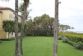 view [La Salona]: The lawn is bordered by hedges and palms, and overlooks the ocean. digital asset: [La Salona]: The lawn is bordered by hedges and palms, and overlooks the ocean.: 2017 March 2