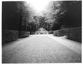 view [Versailles]: looking toward the Buffet d'eau fountain, also known as the Cascade, in the Trianon Gardens. digital asset: [Versailles] [glass negative]: looking toward the Buffet d'eau fountain, also known as the Cascade, in the Trianon Gardens.