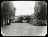 view [Fontainebleau]: pleached trees and allées near the formal gardens, with what appears to be a performance platform or bandstand visible in the distance. digital asset: [Fontainebleau] [lantern slide]: pleached trees and allées near the formal gardens, with what appears to be a performance platform or bandstand visible in the distance.