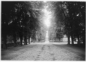 view [Fontainebleau]: gate and adjacent gatehouses on the château grounds, looking out toward what is now the Avenue de Maintenon. digital asset: [Fontainebleau] [glass negative]: gate and adjacent gatehouses on the château grounds, looking out toward what is now the Avenue de Maintenon.