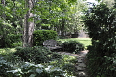 view [Clare House Garden]: The wooden bench, hosta, and stone walkway are shaded by a walnut tree. digital asset: [Clare House Garden]: The wooden bench, hosta, and stone walkway are shaded by a walnut tree.: 2013 May 29