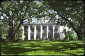 view Oak Alley Plantation digital asset: Oak Alley Plantation: [between 1914 and 1949?]