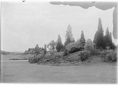 view [Franklin Park]: boulders and evergreens at the edge of a grassy area. digital asset: [Franklin Park] [glass negative]: boulders and evergreens at the edge of a grassy area.