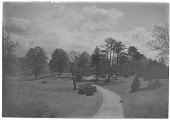 view [Franklin Park]: an overhead view of a broad pathway with a bench on one side. digital asset: [Franklin Park] [glass negative]: an overhead view of a broad pathway with a bench on one side.