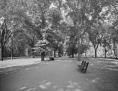 view [Beacon Street & Commonwealth Avenue]: Commonwealth Avenue Mall between Berkeley and Clarendon Streets, looking east toward the statue of John Glover. digital asset: [Beacon Street & Commonwealth Avenue] [glass negative]: Commonwealth Avenue Mall between Berkeley and Clarendon Streets, looking east toward the statue of John Glover.