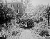 view [Miscellaneous Sites in Salem, Massachusetts]: part of the garden at 26 Chestnut Street, showing its unusual gazebo-like arbor of Dutchman's pipe. digital asset: [Miscellaneous Sites in Salem, Massachusetts] [glass negative]: part of the garden at 26 Chestnut Street, showing its unusual gazebo-like arbor of Dutchman's pipe.