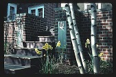view [Birch Tree Garden]: rear garden with steps and light fixtures leading to bluestone terrace. digital asset: [Birch Tree Garden]: rear garden with steps and light fixtures leading to bluestone terrace.: 1988 May.