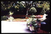 view [Levin Garden]: pool terrace, pots and tree. digital asset: [Levin Garden]: pool terrace, pots and tree.: 1993