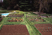 view [Perkins Garden]: the center of the vegetable garden. digital asset: [Perkins Garden]: the center of the vegetable garden.: 1995 May.