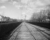 view [Roland Park]: streetcar tracks on the Roland Avenue median. digital asset: [Roland Park] [glass negative]: streetcar tracks on the Roland Avenue median.