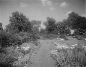 view [Edgewood (MD)]: garden borders in the sunken garden, with the house in the upper right distance. digital asset: [Edgewood (MD)] [glass negative]: garden borders in the sunken garden, with the house in the upper right distance.
