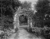 view [Edgewood (MD)]: an arbor covered in climbing plants. digital asset: [Edgewood (MD)] [glass negative]: an arbor covered in climbing plants.