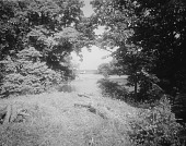 view [Giddings Property]: part of the West Annapolis property, showing an inlet of the Severn River. digital asset: [Giddings Property] [glass negative]: part of the West Annapolis property, showing an inlet of the Severn River.