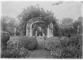 view [Marengo]: rose arbor leading to the rose garden and its sundial. digital asset: [Marengo] [glass negative]: rose arbor leading to the rose garden and its sundial.