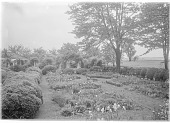 view [Marengo]: the garden in spring, showing bulbs, boxwood, and a water view. digital asset: [Marengo] [glass negative]: the garden in spring, showing bulbs, boxwood, and a water view.