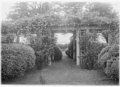 view [Marengo]: clematis-covered pergola and boxwood, with the Miles River in the distance. digital asset: [Marengo] [glass negative]: clematis-covered pergola and boxwood, with the Miles River in the distance.
