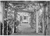 view [Marengo]: the pergola, looking toward the house. digital asset: [Marengo] [glass negative]: the pergola, looking toward the house.