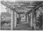 view [Marengo]: the pergola, showing part of the garden and the house. digital asset: [Marengo] [glass negative]: the pergola, showing part of the garden and the house.